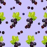 Bayas de la grosella negra en un fondo púrpura en un modelo inconsútil ilustración del vector