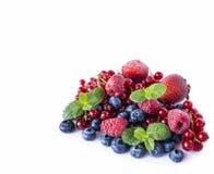 Bayas de la mezcla aisladas en un blanco Arándanos maduros, pasas rojas, frambuesas y fresas Diversas bayas frescas del verano en Foto de archivo