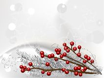 Bayas de la Navidad Fotografía de archivo