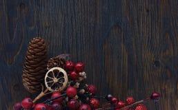 Bayas de la Navidad y conos del pino Fotos de archivo libres de regalías
