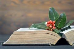Bayas de la Navidad y libro viejo Fotografía de archivo libre de regalías