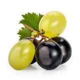 Bayas de las uvas de Muscat Imagen de archivo