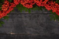 Bayas de serbal en un marco de madera de la tabla Imagen de archivo