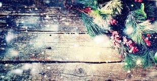 Bayas del árbol de abeto del fondo del vintage de la Navidad Fotos de archivo libres de regalías