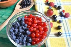 Bayas del color rojo-azul en una comida sana del fondo verde foto de archivo