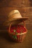Bayas del Redcurrant en sombrero de la cesta y de paja Imagen de archivo libre de regalías