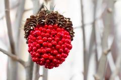 Bayas del rojo de la decoración del invierno Foto de archivo libre de regalías