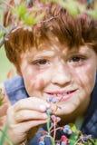 Bayas dulces frescas Foto de archivo libre de regalías
