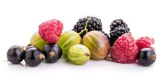 Bayas ( frambuesa, grosella negra, zarzamora, gooseberry) isolat fotos de archivo