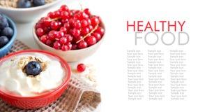 Bayas frescas con el yogur o la crema agria natural Fotografía de archivo libre de regalías