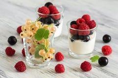 Bayas frescas de frambuesas y de pasas en un vidrio con el yogur Foco selectivo fotografía de archivo