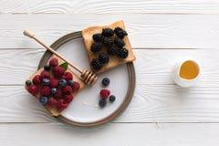 Bayas frescas en tostadas Imagen de archivo libre de regalías