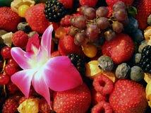Bayas, fruta fresca, flor en el mercado de los granjeros Imágenes de archivo libres de regalías