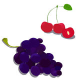 Bayas jugosas dulces con el manojo de uva violeta Foto de archivo libre de regalías