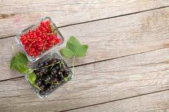 Bayas maduras frescas de la pasa Foto de archivo libre de regalías