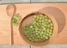 Bayas maduras jugosas de una grosella espinosa Foto de archivo libre de regalías