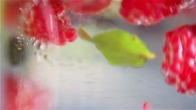 Bayas mezcladas que caen abajo en agua almacen de metraje de vídeo