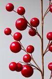 Bayas rojas abstractas Imagen de archivo