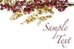 Bayas rojas brillantes en la frontera aislada hojas de oro Fotos de archivo libres de regalías