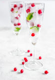 Bayas rojas congeladas en cubos de hielo con la menta en vidrios en el fondo de piedra Foto de archivo