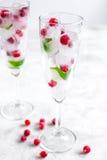 Bayas rojas congeladas en cubos de hielo con la menta en vidrios en el fondo de piedra Fotos de archivo