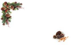 Bayas rojas de los conos del pino de la etiqueta del fondo de la Navidad y subido por la guirnalda festiva Fotos de archivo libres de regalías
