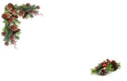 Bayas rojas de los conos del pino de la etiqueta del fondo de la Navidad y subido por la guirnalda festiva Imagen de archivo