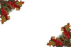 Bayas rojas de los conos del pino de la etiqueta del fondo de la Navidad y subido por la guirnalda festiva Imágenes de archivo libres de regalías