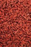 Bayas rojas secas del goji Fotografía de archivo libre de regalías