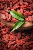 Bayas rojas secas del goji Fotos de archivo
