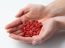 Bayas rojas secas del goji en manos Foto de archivo libre de regalías