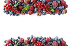Bayas rojas y azules Diversas bayas frescas del verano en la parte posterior del blanco Foto de archivo libre de regalías