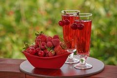 Bayas rojas y vidrios rojos de la bebida Fotos de archivo