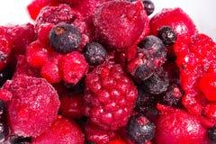 Frutas salvajes Fotografía de archivo libre de regalías