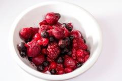 Frutas salvajes Imagen de archivo
