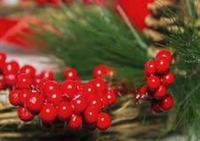 Bayas y cono rojos de la rama de árbol de navidad de las decoraciones de la Navidad Fotografía de archivo libre de regalías