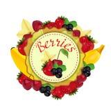 Bayas y fruta label Vector ilustración del vector