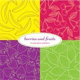 Bayas y frutas Fotos de archivo