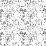 Bayas y frutas ilustración del vector