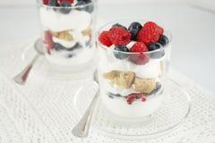 Bayas, yogur y postres helados de las galletas Imágenes de archivo libres de regalías