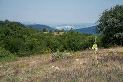 Baydarvallei, de Krim Stock Afbeelding