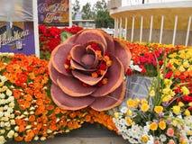 Bayer brachte Rose Parade-Hin- und Herbewegung 2011 voran Lizenzfreie Stockfotos