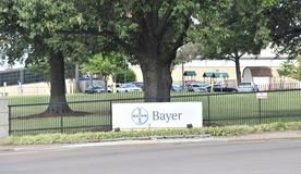 Bayer Medical Research Company 免版税库存照片