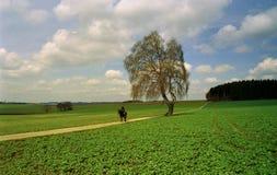 Bayerische Landschaft im Frühjahr Lizenzfreie Stockfotos