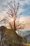 Bayerische Vorfrühlings-Landschaft Stockfotos