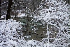 Bayerische Winterlandschaft, grüne fließende Wasser gestaltet durch Weiß lizenzfreies stockbild
