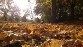 Bayerischer Herbst Lizenzfreies Stockbild