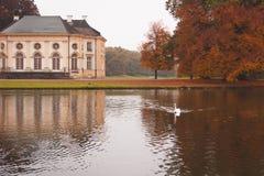 Bayerischer Schloss Nymphenburg-Park, Herbstlandschaft mit einem See und ein Höckerschwan stockbilder
