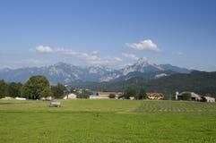 Bayerisches alpines Feld Lizenzfreie Stockfotos