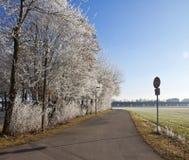 Bayersk vinter, lantlig väg med frostade träd och solig förkylning oss Royaltyfria Foton